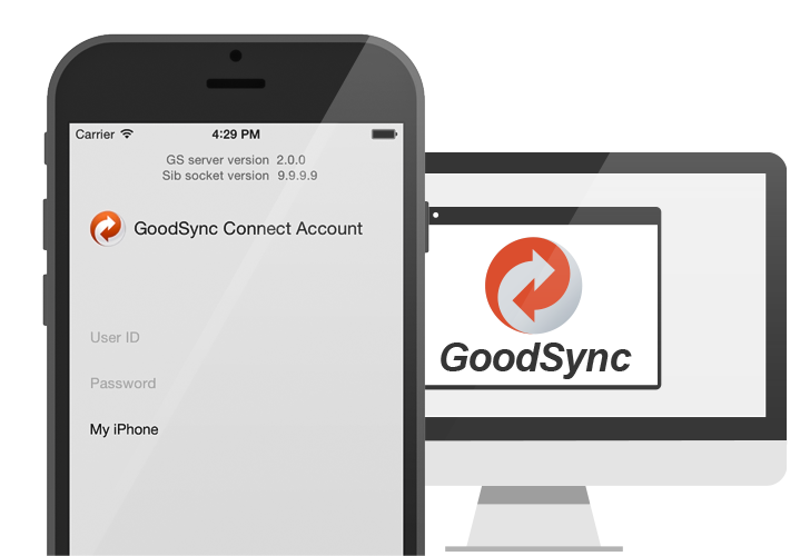 goodsync connect security
