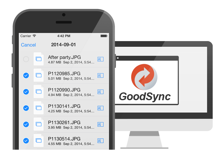 GoodSync Server for iOS
